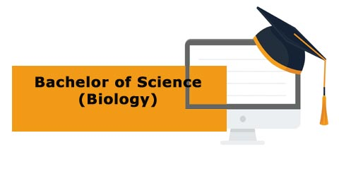 Bachelor of Science - Biology