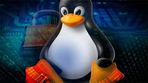 Certificate course in System Administration using Linux